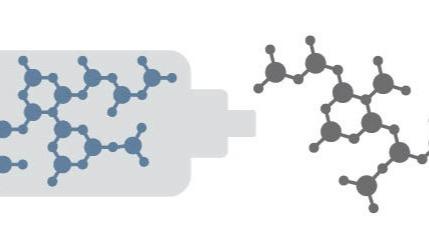 Peptide-stuck-in-Flash-v2-825x250_FI